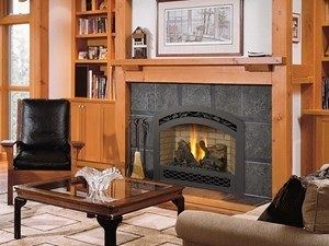Avalon 564 SS GS2 Scr Gas Fireplace Inser in Home