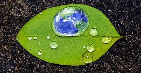 Earth Day Creative Energy