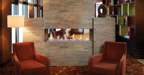 Davinci Fireplace Insert